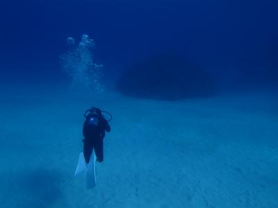 ダイバーと砂地と珊瑚の根